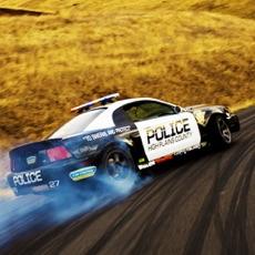 Activities of Police Stunts Crazy Driving School Real Race Game
