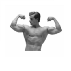 army body fat percentage calculator for iphone on the app store
