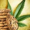 Weed Cookbook 2 - Medical Marijuana Recipes & Cook Reviews