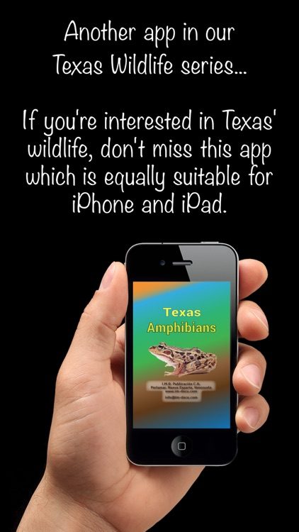 Texas Amphibians - Guide to Common Species