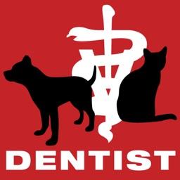 Dog & Cat Dentist