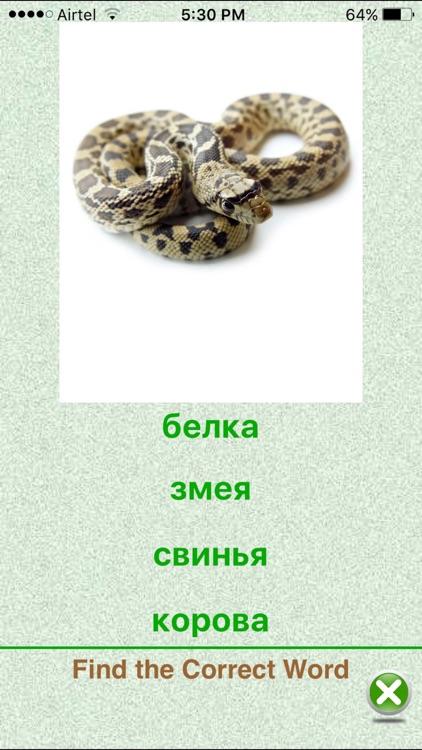 Flashcards Russian Lesson screenshot-3