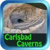 Carlsbad Caverns National Park
