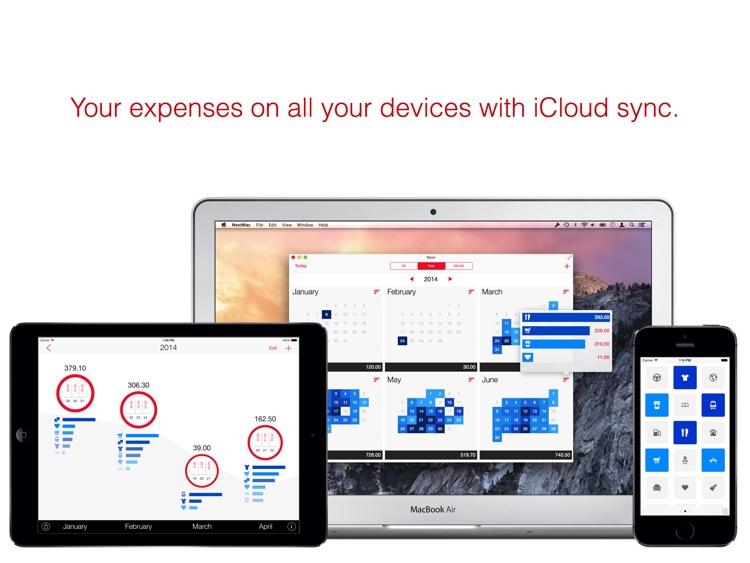 Next for iPad - Expenses screenshot-4