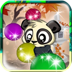 Activities of Bubble Play Forest