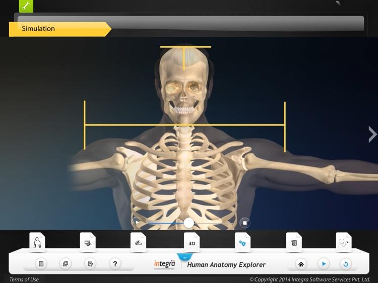 Human Anatomy Explorer Skeletal System screenshot-4
