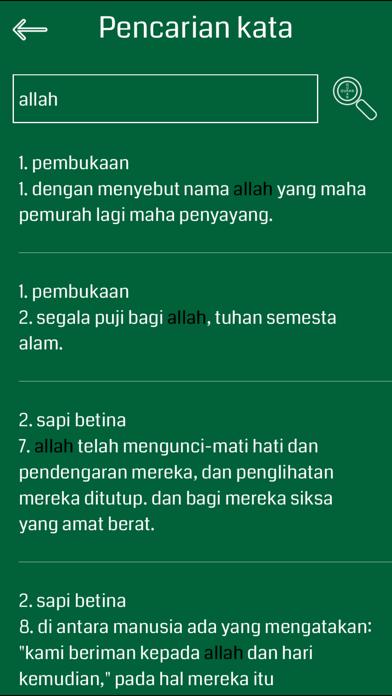 Indonesian Quran Audio screenshot four