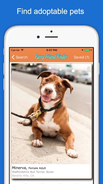 Furry Friend Finder Pet Rescue