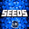 Seeds for Minecraft PE : Free Seeds Pocket Edition Reviews