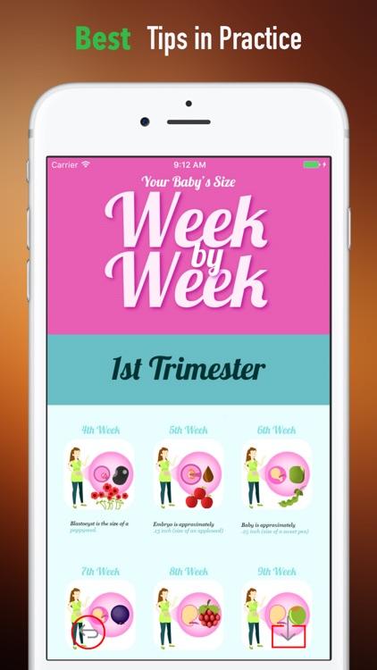 Fetal Development Week by Week Guide screenshot-3