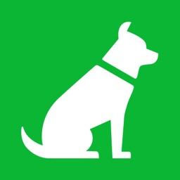 FiDoo: The Dog Doo Tracking App for Canine Health