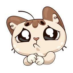 Oscar the cute kitten iMessage stickers