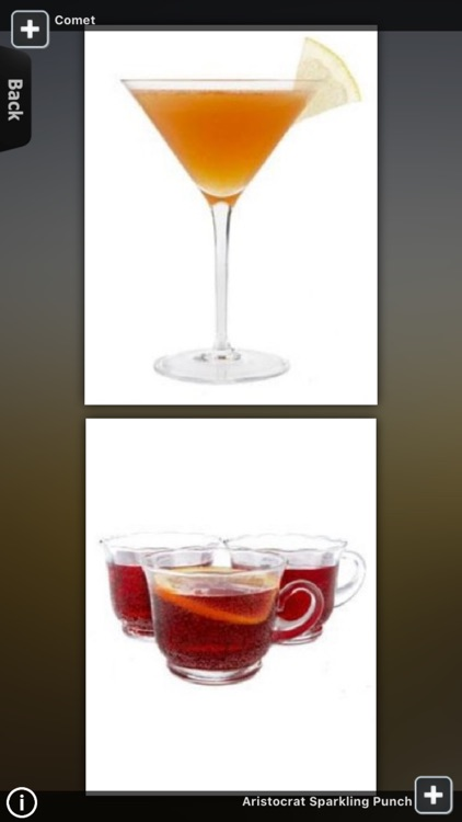 Cocktail Recipes for iPad