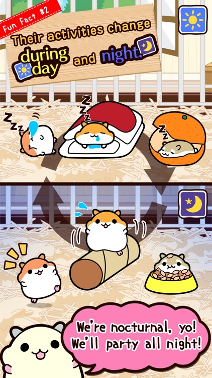 Hamster Collection◆FreeBasic, pet breeding game! screenshot-3