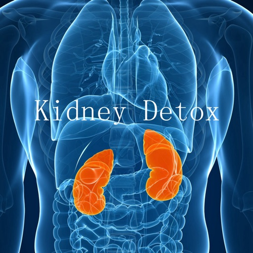 Kidney Detox for Beginners-Diet Guide and Healthy