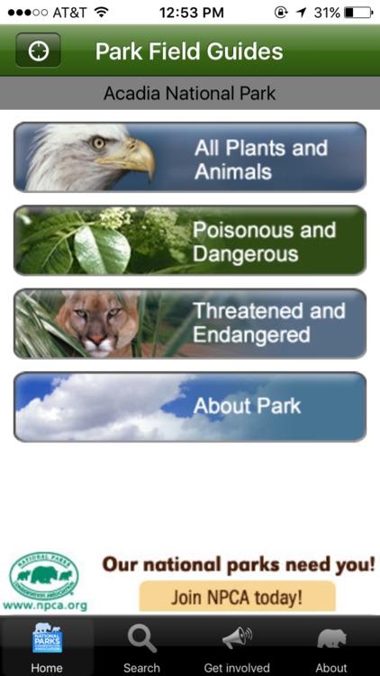 Park Wildlife