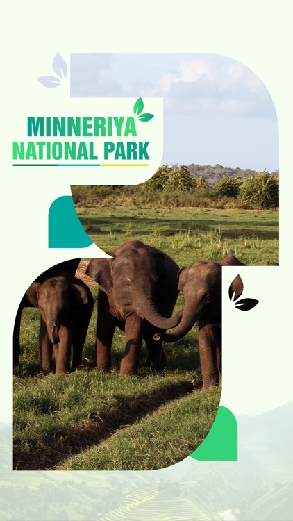 Minneriya National Park Travel Guide