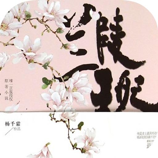 古装言情小说精选:兰陵王妃