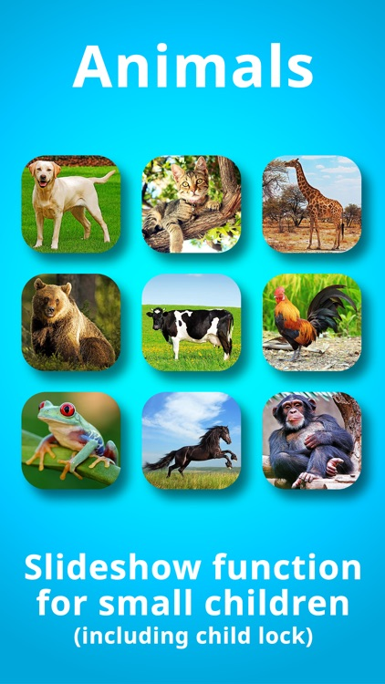 Animals for Babies & Toddlers Free Flashcards screenshot-3