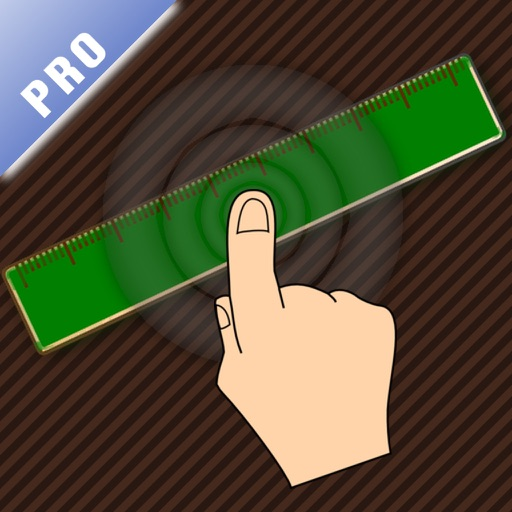 Visual Scale PRO (painometer, measure pain level)