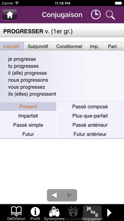 French dictionary DIXEL Mobile screenshot-3