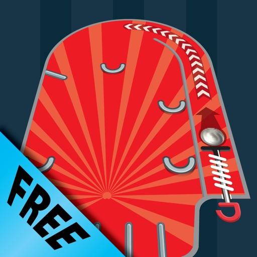 Handheld Pinball Free iOS App