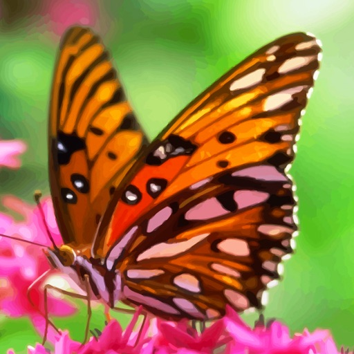 US Butterfly Bible