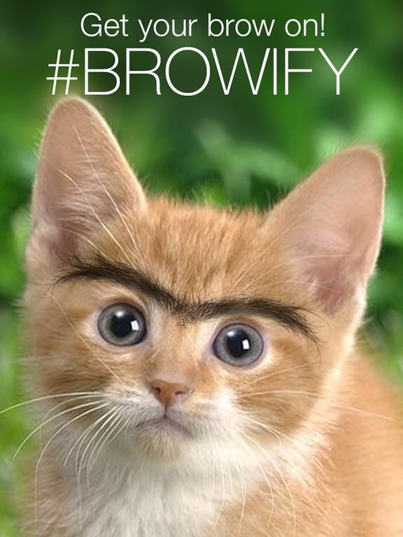 Browify - Eyebrow Photo Booth Screenshots