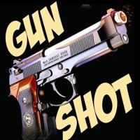 Codes for Gun Shot Sounds!!! Hack