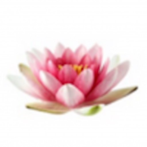 Grief Reiki® Oracle Cards App