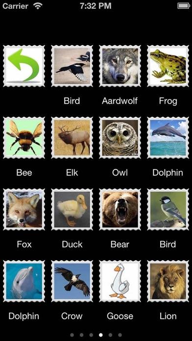 80 Animal Sounds