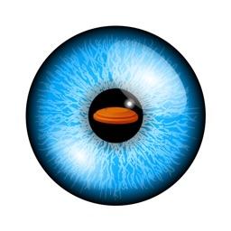 eyeGymVR