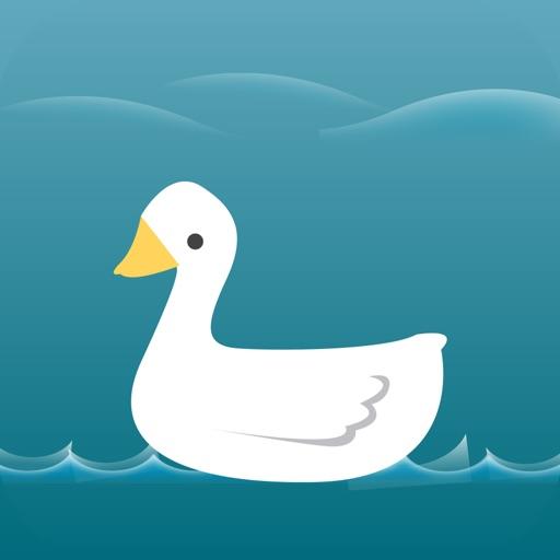 Duck Hunting Calls .!