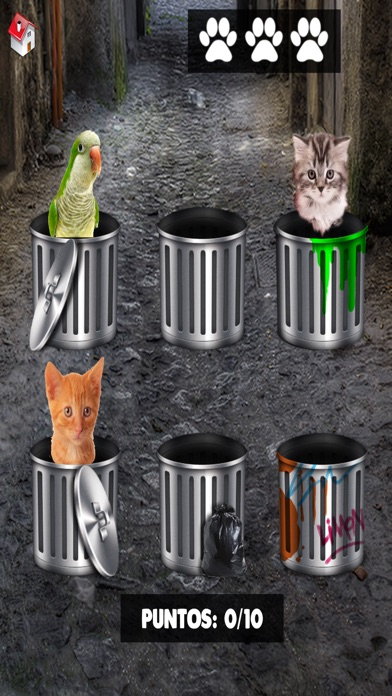 Hello cute cats – Kittens in the world & cat game Screenshot on iOS