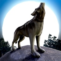 Codes for Wolf.io Hack