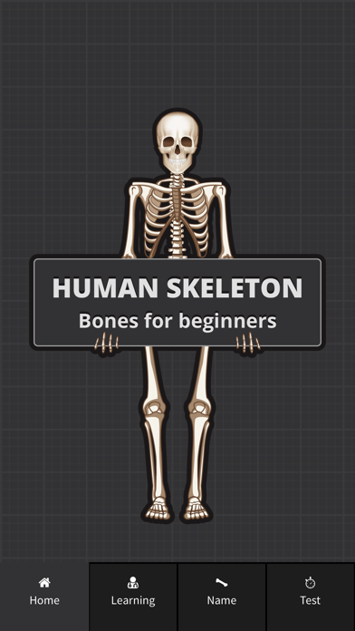 Human Skeleton: Bones for beginners screenshot one