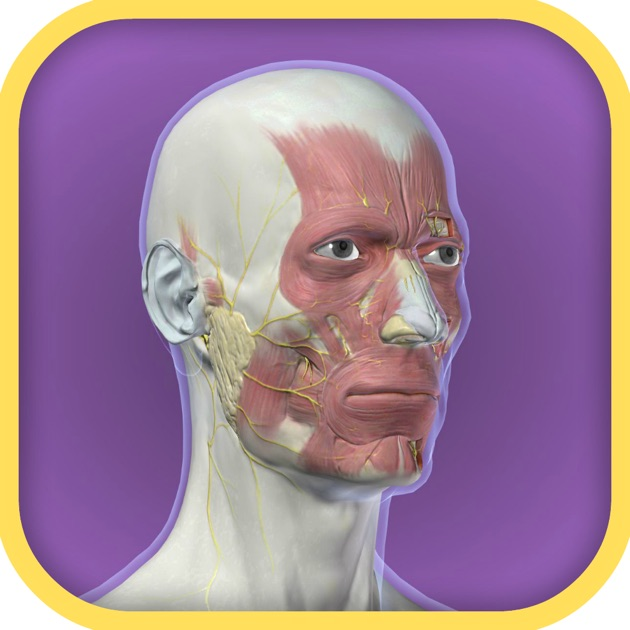 how to rotate video on iphone 3d anatomy tool on the app 3124