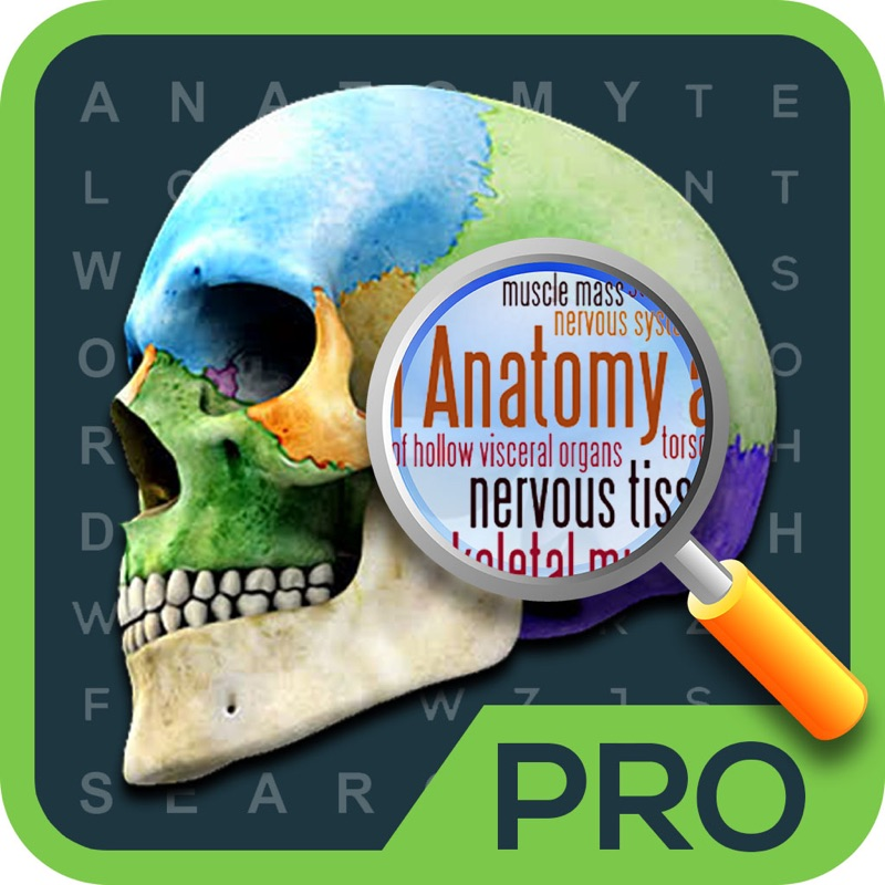 Anatomy Word Search Medical Terms Game Online Game Hack And Cheat