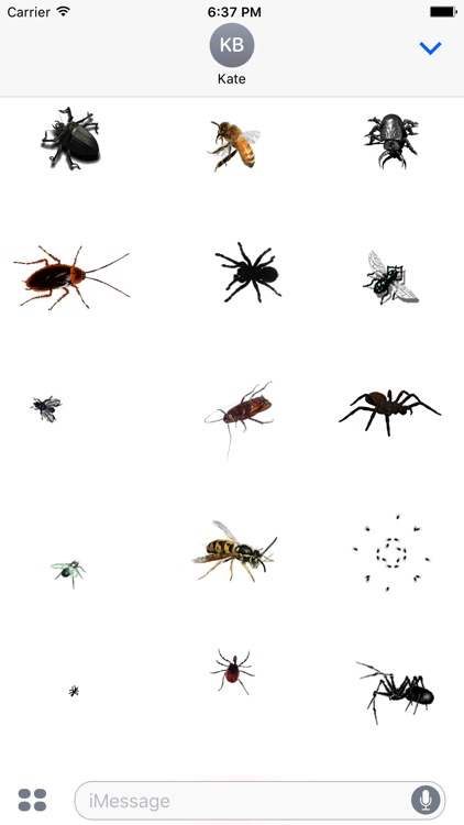 Animated Insects Sticker App