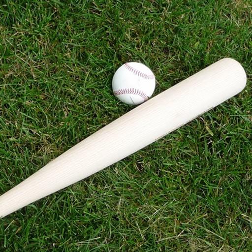 Pro Baseball Stats