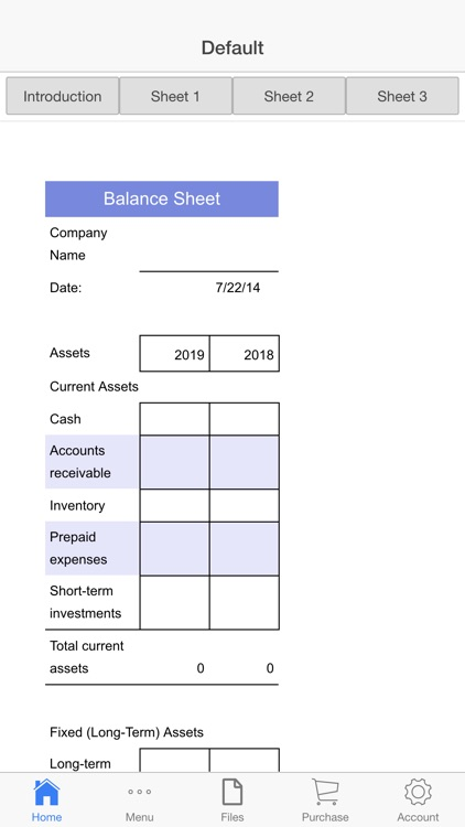 Balance Sheet screenshot-3