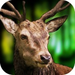 Hack 3D Deer Sniper Hunting Game 2017