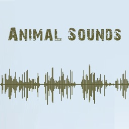 Animal Sounds - Premium Sounds for FREE