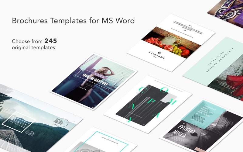 Brochures Expert - Templates for MS Word Screenshot