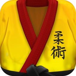 BJJ Brazilian Jiu-Jitsu Mixed Martial Arts Lessons