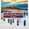 Galapagos Island Travel Guide