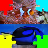 Codes for Jigsaw Puzzles for Clownfish and Friends Hack