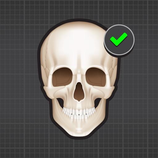 Human Skeleton: Bones for beginners iOS App