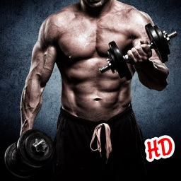 Gym Workout HD Wallpaper & Background