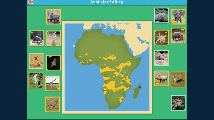 Montessori Animals of Africa screenshot-4